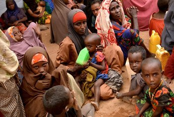 This young mother walked 20 days from Diinsoor, Somalia, with her seven children to Hagadera refugee camp in Dadaab, Kenya. After her husband's livestock died because of the drought in Somalia, he sent her to Dadaab because he was unable to feed them.  (file photo)