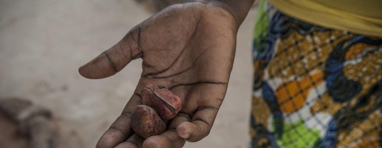 Una comadrona enseña las nueces Kola, un fruto seco que forma parte de las tradiciones prematrimoniales en Ghana.