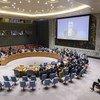 Спецкоординатор ООН по ближневосточному мирному процессу Николай Младенов обратился к членам Совбеза по видеосвязи.