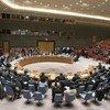 قاعة مجلس الأمن الدولي. أبريل/نيسان 2018