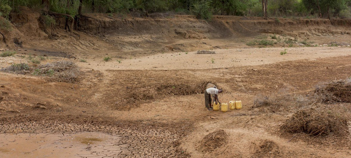 A person searches for water at a dry riverbed in eastern Kenya.