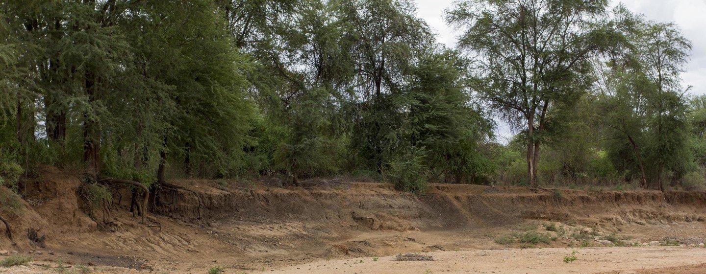 Una persona excava en busca de agua en el lecho de un río en la Provincia Oriental, en Kenia.