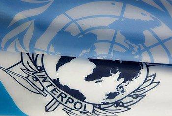 A ONU e a Interpol são parceiras no combate ao terrorismo.