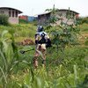 A member of the UN Mine Action Service (UNMAS) clears the UN base outside Juba, South Sudan, of unexploded ordnance (UXO's) in the aftermath of heavy clashes. UXO are comprised of bombs, mortars, grenades or other devices that fail to detonate but remain volatile and can kill if touched or moved.