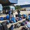 Des réfugiés vénézueliens récupèrent leurs bagages après être arrivés à Sao Paulo, au Brésil.