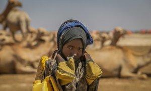 在埃塞俄比亚,一名九岁的女童正提着装满饮水的水桶,徒步返回四公里之外的家中。