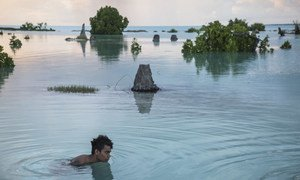 Un adolescent nage dans une zone inondée du village d'Aberao, à Kiribati. Cette île du Pacifique est l'un des pays les plus affectés par le montée du niveau de la mer.