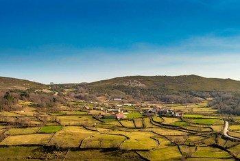 Barroso está entre os 13 novos locais certificados como património agrícola mundial.