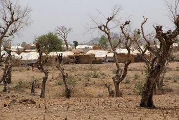 Un camp de réfugiés dans le nord du Cameroun hébergeant des réfugiés nigérians (archives).