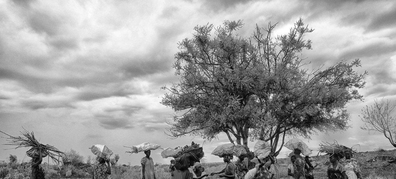 Trabalhadores humanitários enfrentam situação de insegurança