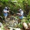 La misión de la ONU en Colombia extrae alijos de armas.