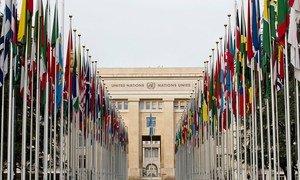 Аллея флагов на пути к зданию учреждений ООН в Женеве