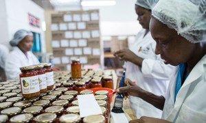 在瑞士的一家公平贸易食品生产企业内,工人正在为产品贴上标签。