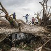 联合国粮农组织和世界粮食计划署今天表示,干旱导致危地马拉、萨尔瓦多和洪都拉斯损失大约28万公顷豆类和玉米作物,影响了200多万人的粮食安全。