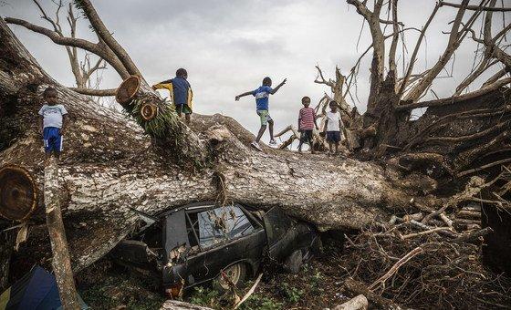 Des enfants jouent sur un arbre tombé lors du cyclone Pam du 13 mars 2015 et s'est écrasé sur une voiture à la périphérie de Port Vila à Vanuatu.