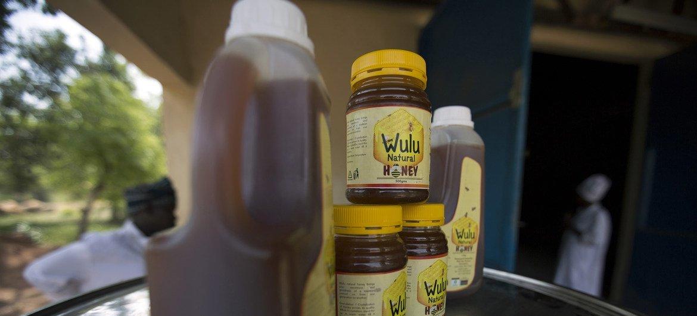 A importância das abelhas vai muito além da produção de mel.