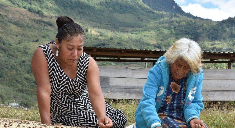 Mujeres del café, la tercera fotografía ganadora del concurso Mujeres Indígenas y Seguridad Alimentaria de América Latina y el Caribe.