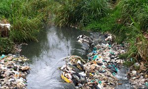 Huge amounts of waste including plastics are thrown from in the Kenyan capital of Nairobi into the Nairobi river.