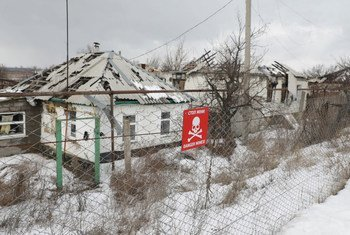 """乌克兰东部的""""接触线""""已成为全球地雷密度最高的地区之一。"""