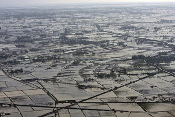 """An aerial view of the Ayeyarwady delta region, in Myanmar, along the shores of the Andaman Sea, damaged by cyclone """"Nargis"""". (2008)"""