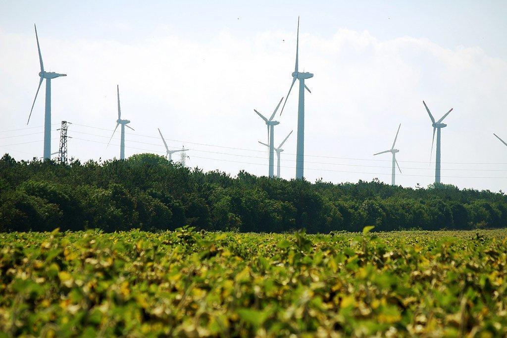 """联合国环境署与20多家政府、企业和机构共同成立""""清凉联盟"""",推广清洁和高效的制冷手段,节约用电、节省开支、应对气候变化,同时减少因高温而出现的生命损失。"""