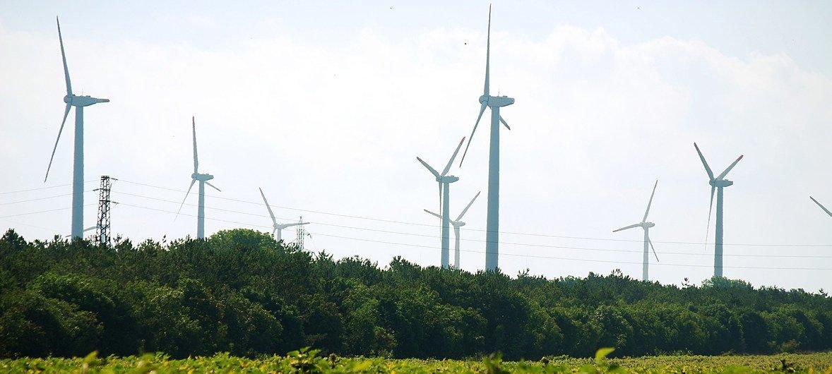 Ветряная электростанция в Болгарии. По данным МОТ, переход на зеленую экономику позволит создать 24 млн. рабочих мест к 2030 году.