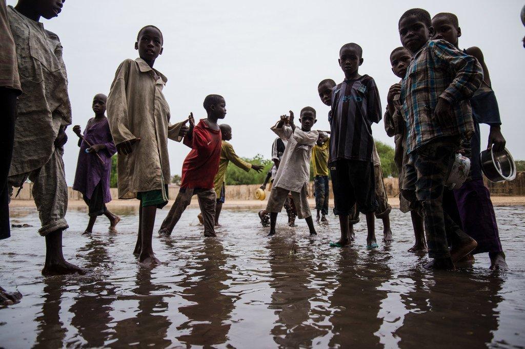 洪水过后,尼日利亚东北部博尔诺州的儿童在水洼中玩耍。