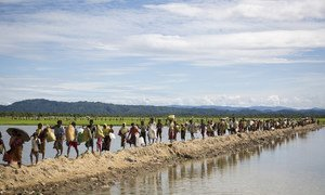 Rohingya families arrive at a UNHCR transit centre near the village of Anjuman Para, Cox's Bazar, south-east Bangladesh after spending four days stranded at the Myanmar border with some 6,800 refugees. (file)