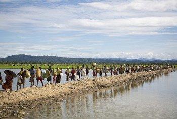 Famílias Rohingya chegam a um centro de transição do Ucnur.