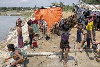Kijana waRohingya akibeba kuni kichwani katika Cox's Bazar. Inasemekana wanawake na wasichana walibakwa nchini Myanmar walikotoroka