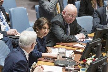Розмари Дикарло на заседании Совета  Безопасности ООН