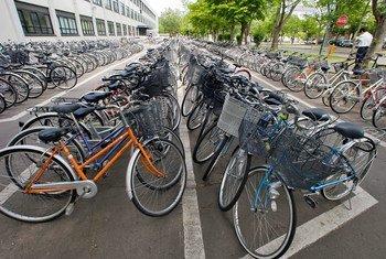 Около 50 процентов учащихся и работающих жителей Копенгагена добираются до места учебы или работы на велосипедах