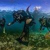 Подводные фотографы запечатлели, насколько загрязнен океан