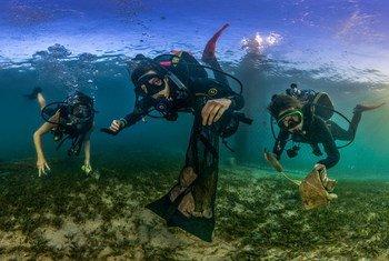 مصورون يلقون الضوء على أخطار التلوث البلاستيكي في المحيطات بأنحاء العالم.