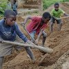 Nchini Malawi, watoto wanafanya kazi katika eneo la ujenzi