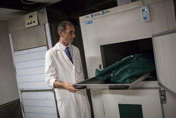 Профессор Павлос Павлидис уже 20 лет проводит экспертизу тел, найденных в реке Эврос, разделяющей Грецию и Турцию.