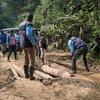 فريق تابع لمنظمة الصحة العالمية يقوم بمساعدة السكان المحليين بعبور طريق عبر الغابات الاستوائية لجلب لقاح الإيبولا إلى المجتمعات النائية في جمهورية الكونغو الديمقراطية.