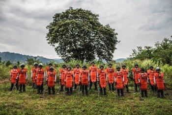 El Servicio de la ONU de Actividades relativas a las minas fortaleció la capacidad nacional apoyando operaciones de desminado de la Campaña Colombiana Contra las Minas, una organización colombiana en el municipio de Algeciras, en el departamento de Huila.