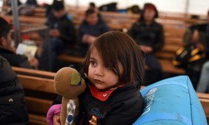 A young child holds a toy as she seeks shelter with other Afghan refugees from very cold, wet weather conditions at the Tabanovce reception centre for refugees in the former Yugoslav Republic of Macedonia after being refused entry into Serbia. February 2016.