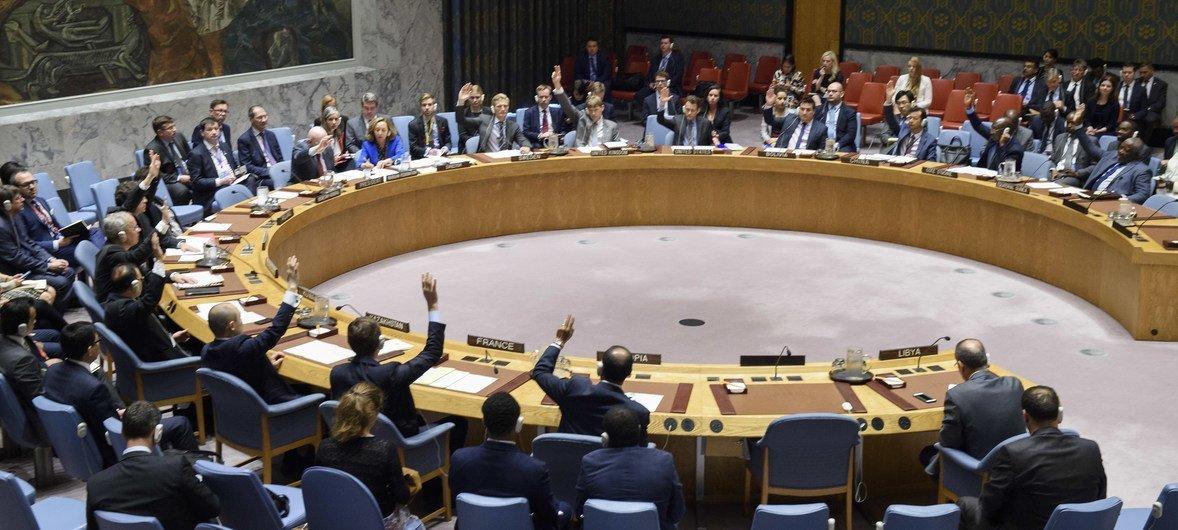 مجلس الأمن يعتمد القرار 2420 (2018)