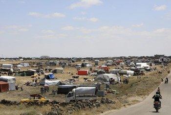 Pessoas que fogem de Quneitra, sudeste da Síria, procuram abrigo em descampados.