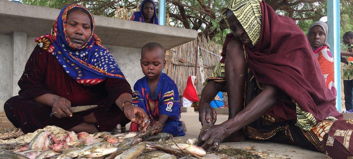 Mujeres se sostienen economicamente de la captura, preparación, y venta de pescado en la región de la Cuenca del Lago Chad.