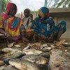 Des femmes du lac Tchad ont reçu de nouveaux filets de la part du Programme des Nations Unies pour le développement (PNUD) afin de pouvoir attraper davantage de poissons.
