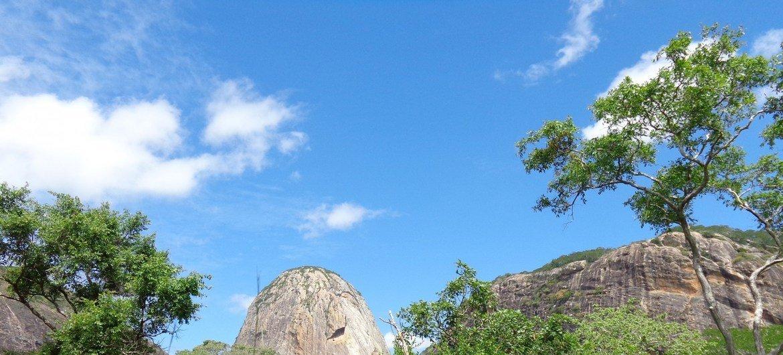 Reserva da biosfera de Quirimbas, em Moçambique.