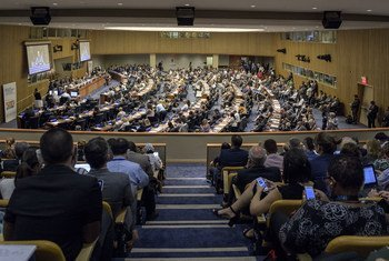 Forum politique de haut niveau sur le développement durable organisé sous les auspices de l'ECOSOC