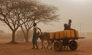 Au Burkina Faso, des centaines de milliers de personnes sont confrontées à l'insécurité alimentaire dans ce pays du Sahel également touché par l'insécurité
