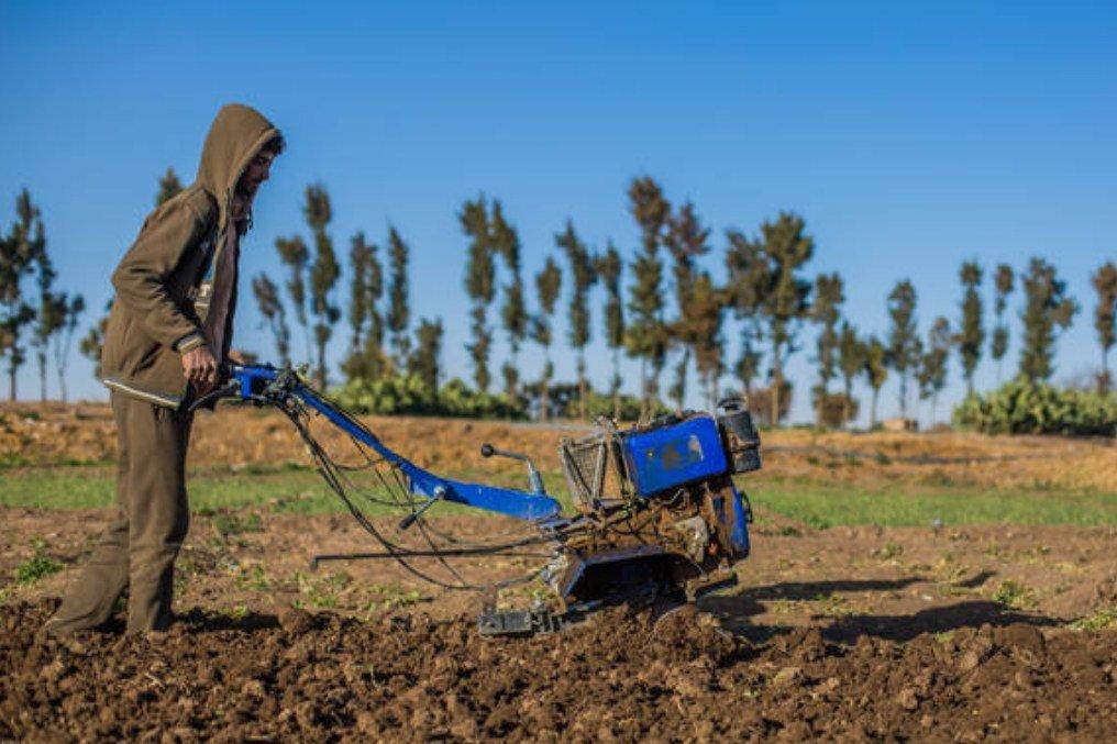 مزارع يجهّز الأرض لزراعتها في إطار مشروع للفاو في اليمن.