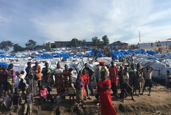 Un site de déplacés à l'hôpital général de Bunia, dans la province d'Ituri, en RDC.
