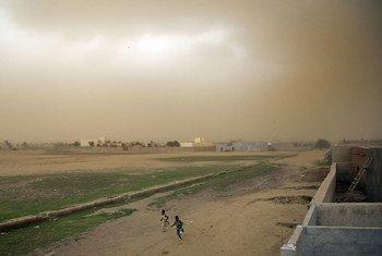 Des enfants courent alors qu'une tempête approche à Gao, au Mali.