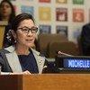 联合国开发计划署亲善大使、著名影星杨紫琼7月16日在2018可持续发展高级别政治论坛开幕式上致辞。
